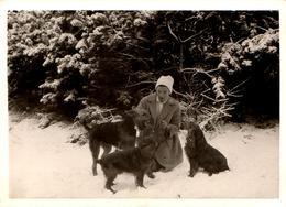 Photo Originale Portrait De Femme Dresseuse De Chiens Sur La Neige - Cocker & Fox Terrier à Poils Durs Vers 1960/70 - Anonymous Persons