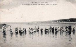 CPA     14     VIERVILLE-SUR-MER---LE BARRAGE DE LA GRANDE NOUE POUR LA PECHE DE LA SARDINE - France
