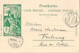 PK 31  UPU  Domdidier - Fribourg          1900 - Postwaardestukken