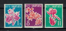 Albania 1961 _ Flowers _ Full Set - MNH ** - Albania