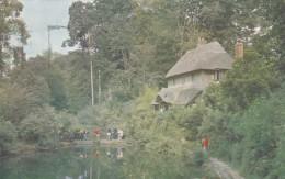 YEOVIL - NINE SPRINGS - England