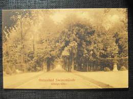 AK SWINEMÜNDE Allee  Ca.1908///  D*33061 - Pommern