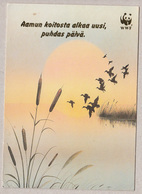Summer Lake Landscape - Paysage De Lac D'été - Suomi Finland Pro Natura - WWF Panda Logo - Fleurs, Plantes & Arbres