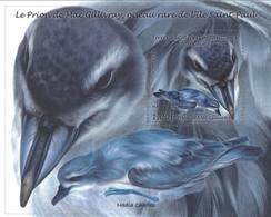 """TAAF 2018 : Bloc """"Le Prion De Mac De Gillivray, Oiseau Rare De L'Île Saint Paul"""" - Neuf ** - - French Southern And Antarctic Territories (TAAF)"""