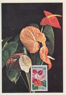 Carte Maximum  1er  Jour   FRANCE   Anthurium  De  La   Martinique   FORT  DE  FRANCE   1973 - Cartes-Maximum