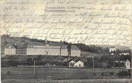 Carte Postale Ancienne De  CHATEAU -  SALINS - Chateau Salins