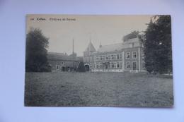 38577-   Celles  Faimes  Chateau Saives - Faimes