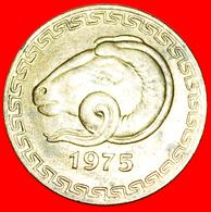 # CZECHOSLOVAKIA: ALGERIA ★ 20 CENTIMES FAO 1975 MINT LUSTER! LOW START ★ NO RESERVE! - Algeria