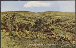 Dunkery Beacon, Exmoor, Somerset, 1962 - Blackmore Postcard - England