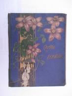 ALBUM CARTES POSTALES ANCIENNES Vide (V1801) Dim : 24 X 29 Cm (2 Vues) Contenance : +/- 102 Cp Décor Fleuri Cignes - Materiali