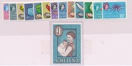 ** N°141/54 - TB - Saint Helena Island