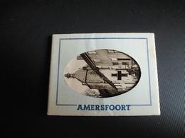 1621   AMERSFOORT    KLEINE KAARTJES - Amersfoort