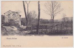 Grand Halleux - Le Moulin à Eau - Edit. Nels Serie 20 N° 45 - Watermolen - Vielsalm