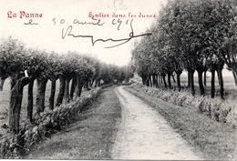 """DE PANNE - LA PANNE : Pad In De Duinen - Sentier Dans Les Dunes (oblitération """"Trésor Et Postes"""" - De Panne"""