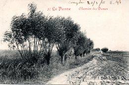 DE PANNE - LA PANNE : Weg Van Duinen - Chemin Des Dunes - De Panne
