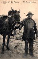 DE PANNE - LA PANNE : Visser Met Paard - Pêcheur à Cheval - De Panne
