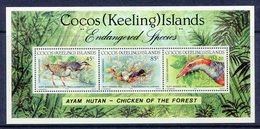Cocos (Keeling) Islands 1992 Endangered Species - Banded Rail MS MNH (SG MS269) - Islas Cocos (Keeling)