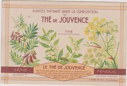 The De Jouvence  Fenouil   Sene Purgatif Plante Medecinale - Plantes Médicinales