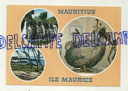 Ile Maurice. Mauritius. Carte Mosaïque. Souillac. Dodo. Roches Noires - Maurice