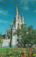 Florida Orlando Walt Disney World Cinderella Castle