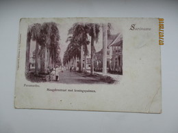 SURINAM  SURINAME PARAMARIBO MAAGDENSTRAAT , OLD POSTCARD , 0 - Surinam