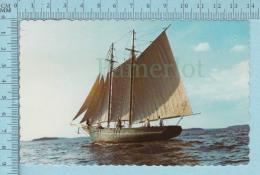 CPSM Voyagé 1976 -Maine's Last Clipper-Bower Fishing Schooner Built 1906  - Timbre US 11¢ - Pêche