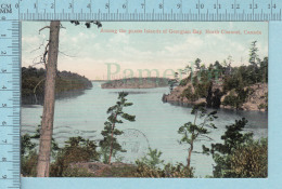 CPA Voyagé 1909 - Amoung The 30,000 Islands Of Georgian Bay North Channel Canada   - Timbre CND #89 - Ontario