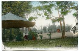 SINGAPORE : BOTANICAL GARDEN - Singapore