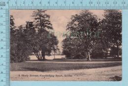 CPA Voyagé 1909 - A Shady Retreat Couchiching Beach Orillia Ontario  - Timbre CND #89 - Non Classés