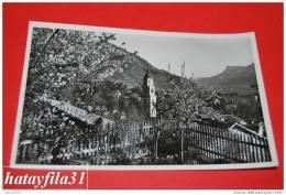 """BOLZANO -PANORAMA Di  MERANO - Dalla Pensione """""""" SAXIFRAGA MIMOSA  Gelaufen 1953 - Bolzano"""