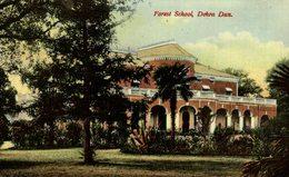 FOREST SCHOOL DEHRA DUN INDIA INDIA INDIEN - India