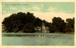 VIEW IN PAGET PARK  AMBALA   INDIA INDIA INDIEN - India