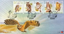 South Africa 2007 First Day Cover FDC Birds Strip Owls Animals Bird Owl Nature Date 3/8/2007 Stamps - Owls