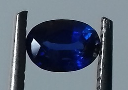 0.60 Ct Natural Blue Sapphire Oval Shape [#0075-03] - Zafiro
