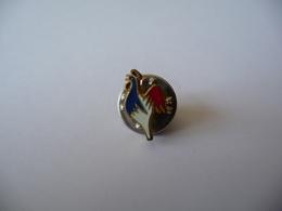 Pin's Coq Fédération Française De ? - Badges