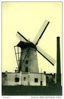 HEKELGEM Bij Affligem (Vlaams-Brabant) - Molen/moulin - Zeldzame Opname Van Molen De Vis In Goede Staat, Met Schoorsteen - Affligem