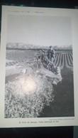 Affiche (dessin) -  RSS DE GEORGIE - Taille Mécanique Du Thé - Afiches