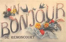 54 - MEURTHE ET MOSELLE / Fantaisie Moderne - CPM - Format 9 X 14 Cm - 545839 - Remoncourt - Autres Communes