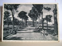 1957 - Imola - Istituto Tecnico Agrario G. Scarabelli - Scuola - Cartolina Storica Originale - Imola