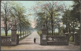 Norfolk Park Avenue, Sheffield, Yorkshire, C.1905-10 - Wrench Postcard - Sheffield