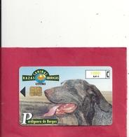 RAZAS CANINAS IBERICAS . N° 10 . PERDIGUERO DE BURGOS . 1.000 Pta 6,01€ - Espagne