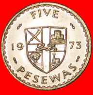 # CACAO: GHANA ★ 5 PESEWAS 1973 BU! LOW START ★ NO RESERVE! - Ghana