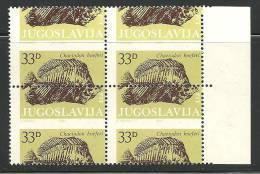 1985 YUGOSLAVIA FOSSIL FISH NICE SHIFTED PERFORATION ERROR MISSPERFORATION VERY RARE CHAETODON HOEFERI JURASSIC - Fossiles