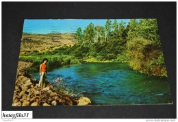 Jordanien Jordan      /    Gelaufen  1970    ( 91) - Jordanien