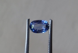 0.70 Natural Blue Sapphire Oval Shape [#0078-04] - Sapphire