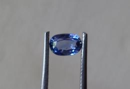 0.70 Natural Blue Sapphire Oval Shape [#0078-04] - Saphir