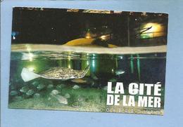 """Cherbourg (50) La Cité De La Mer """"on A Marché Sous La Mer"""" Adulte 2 Scans Raie 23-03-2011 - Tickets D'entrée"""