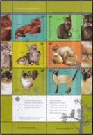 Argentina - 2005 - Races De Chats - Katten