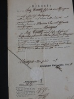 Versteigerungsdokument, Usingen , 1877 - Historical Documents