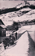 France 74, Bernex, Attelage, Transport En Traineau (837) - Autres Communes